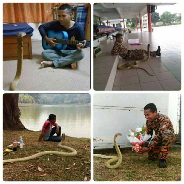 Hussin lida com cobras desde 2007 e treina outros bombeiros em Pahanga (Crédito: Arquivo Pessoal)