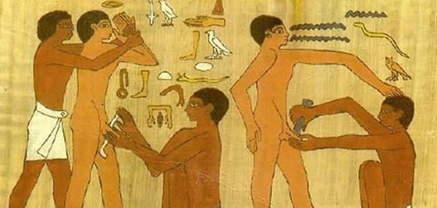 Coisas curiosas que você não sabia sobre o pênis humano