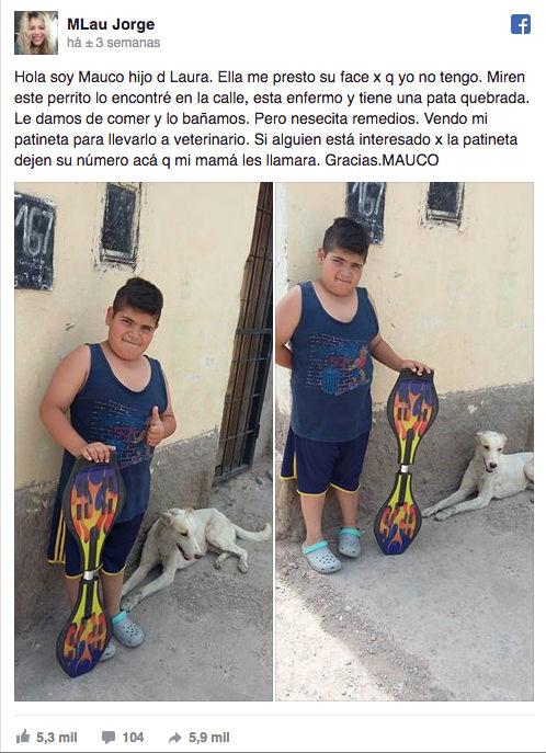 Para pagar tratamento de cão de rua, menino decide vender brinquedo