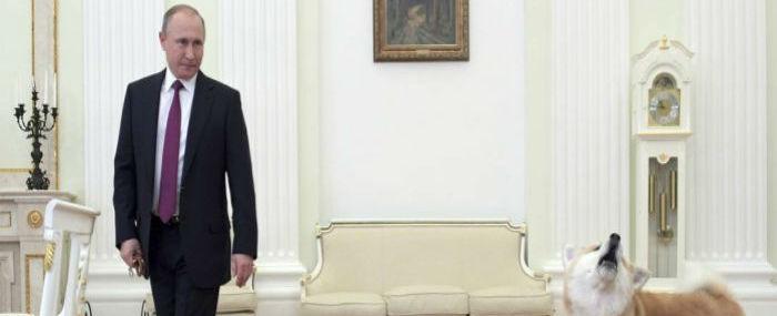 'Forbes': Putin é o homem mais poderoso do mundo