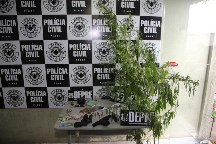 Armas, drogas e pé de maconha apreendidos (Crédito: Efrém Ribeiro)