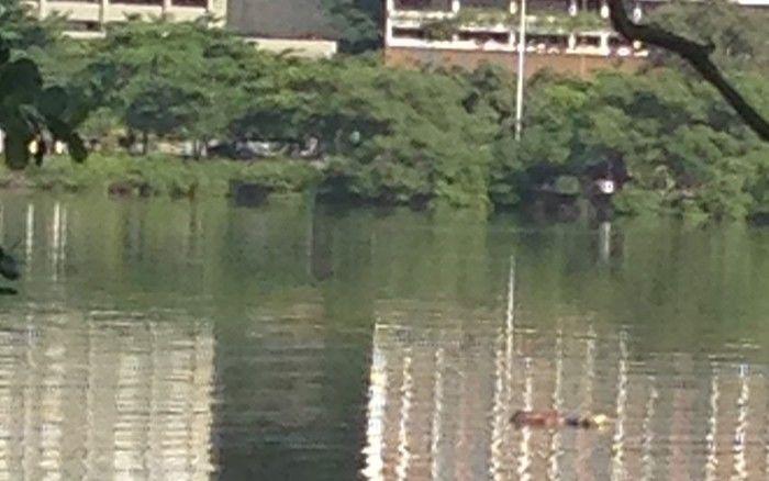Corpo é encontrado na Lagoa, Zona Sul do Rio de Janeiro