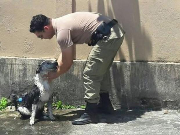 Cão recebeu banho de mangueira de policiais (Crédito: Reprodução)