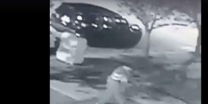 Após críticas em rede social, ladrão devolve luzes de Natal roubada