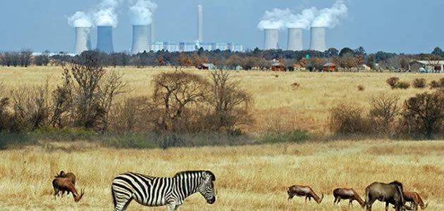 Poluição mata mais que desnutrição na África