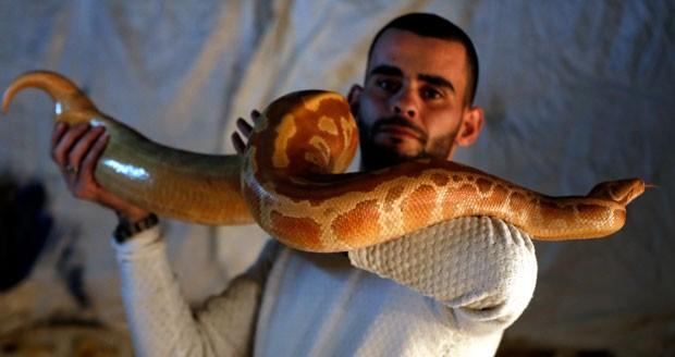 Omar Ibrahim costuma passear com suas cobras (Crédito: Ahmad Gharabli/AFP)