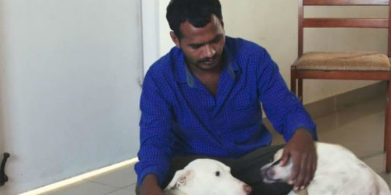 Por dez anos, homem junta dinheiro e combra ambulância para animais