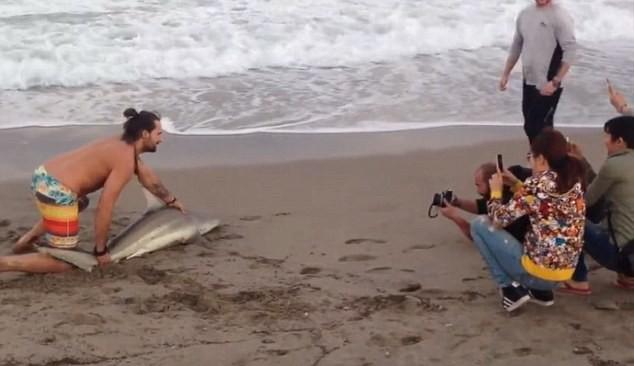 Homem tira foto com tubarão (Crédito: Reprodução)