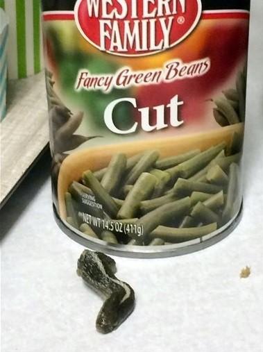 Americana encontra cabeça de cobra em lata de vagens (Crédito: Reprodução)