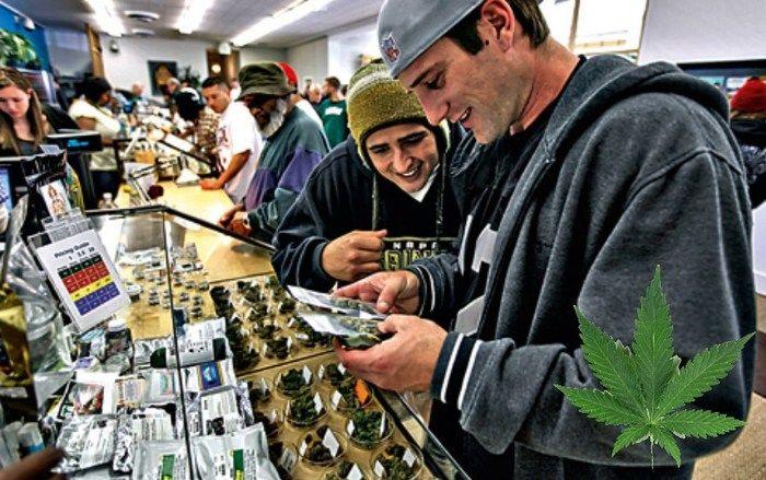 Venda de maconha legalizada (Crédito: Divulgação)