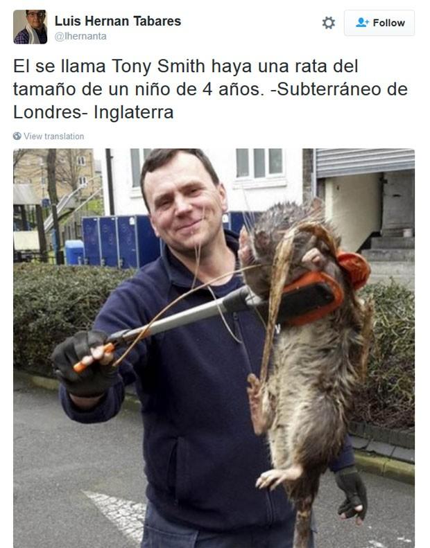 Homem com rato gigante (Crédito: Divulgação)