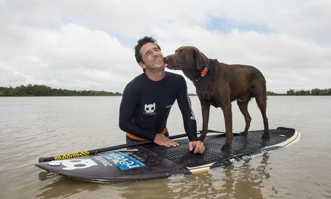 Cão surfista (Crédito: Divulgação)