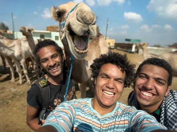 Dromedário posa sorridente em selfie e vira hit nas redes sociais (Crédito: Reprodução)