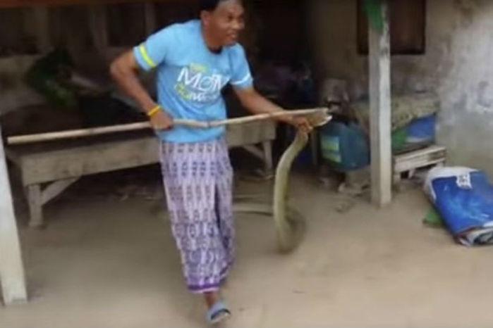 Homem pegou cobra com vassoura e depois com as mãos