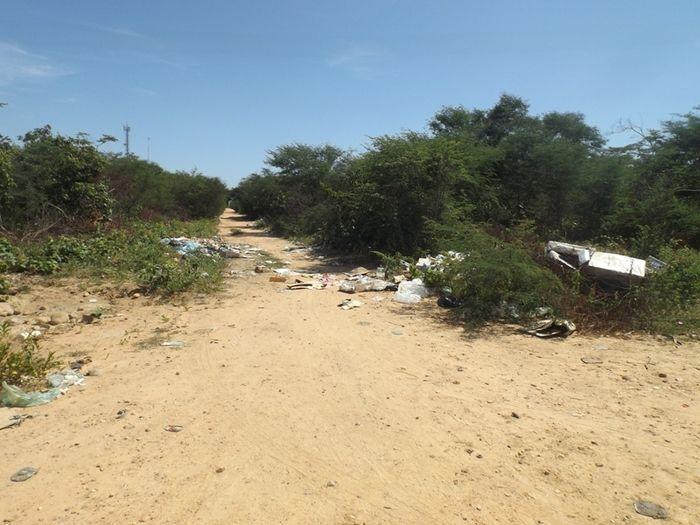 Prefeitura intensifica trabalho de combate ao mosquito Aedes Aegypt - Imagem 7