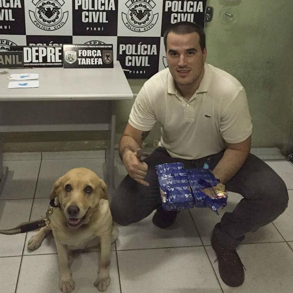 (Crédito: Divulgação/Polícia Civil)