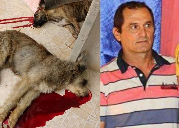 Homem mata cães (Crédito: Divulgação)
