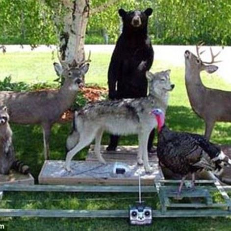 Policiais usam robôs de animais selvagens para prender caçadores