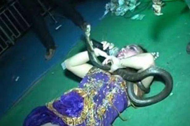 Cantora morreu após ser picada por cobra