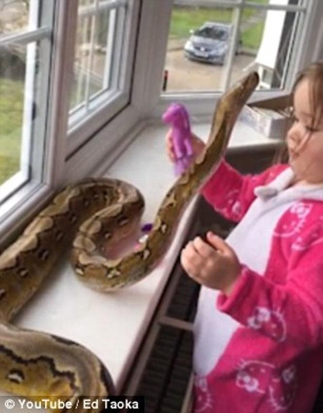 Nas imagens, menina aparece abraçando e brincando com a cobra