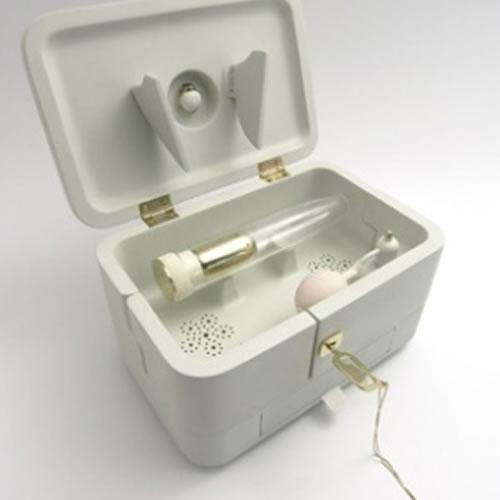 Brinquedo vem em um estojo com uma chave banhada a ouro (Crédito: Reprodução/Mark Sturkenboom)