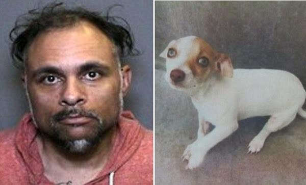 Joshua West foi preso após polícia descobrir que seu cachorro estava viciado em drogas