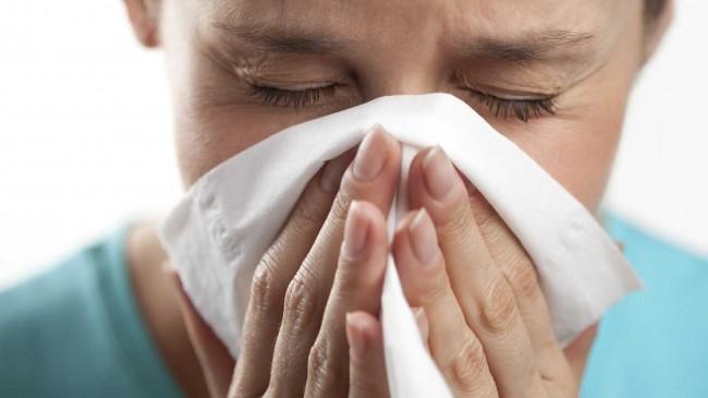 Influenza A (Crédito: Reprodução)