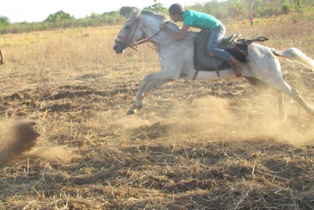Vem ai! a tradicional Corrida de Cavalos de Pitombeira