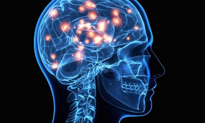 Reclamação e o cérebro (Crédito: Reprodução)
