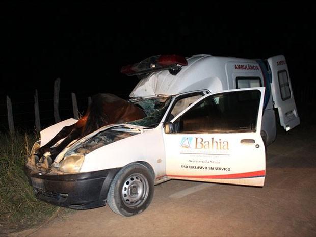Cavalo entrou por para-brisa de carro em acidente (Crédito: Sessé Guimmas/MedeirosDiaDia)