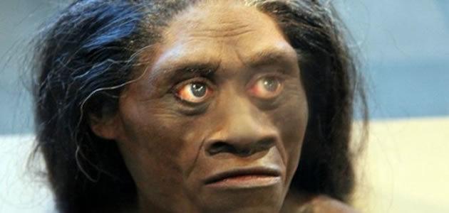 Pesquisadores encontram ossos de humanos parentes dos Hobbits