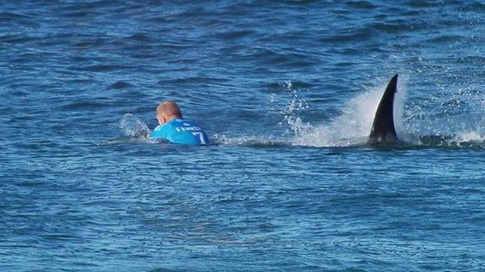 Mick Fanning foi atacado por tubarão na final da etapa de J-Bay (Crédito: WSL)