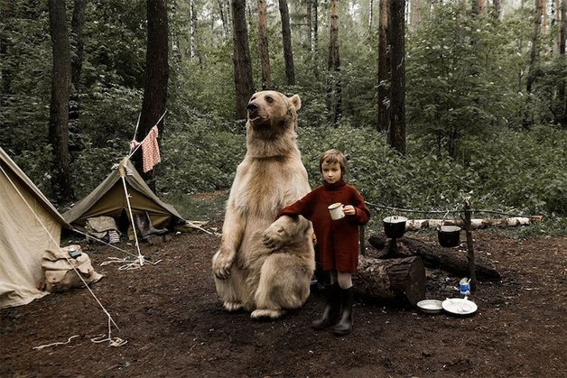 Sessão de fotos com urso (Crédito: Reprodução)