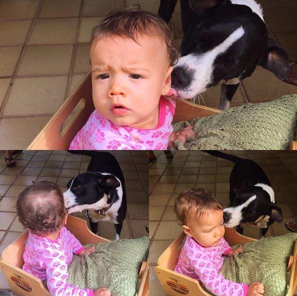 Liz, filha de Luana Piovani, ganha 'beijo' da cachorrinha Latinha  (Crédito: Reprodução)