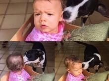 Luana Piovani posta foto de cão dando lambida na filha