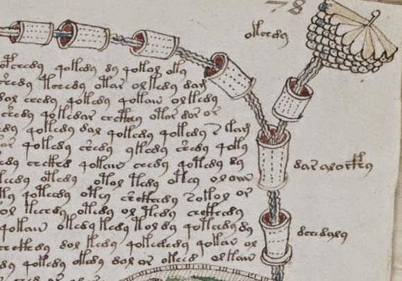 Manuscrito Voynich (Crédito: Reprodução)
