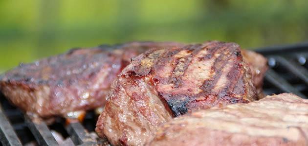 É proibido comer carne de animais com câncer?