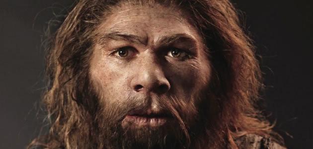 Pesquisadores dizem que neandertais praticavam canibalismo