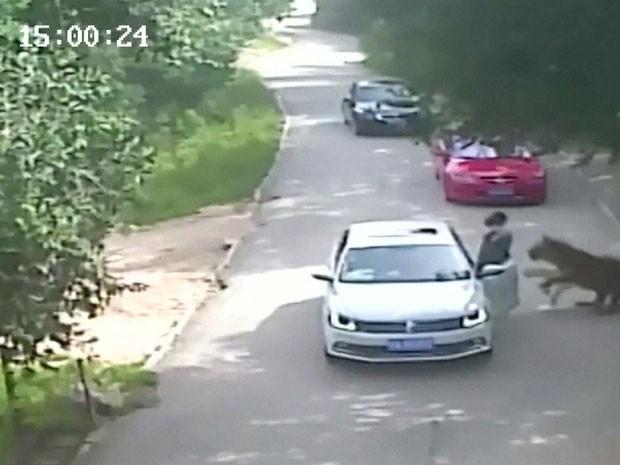Mulher é morte por tigre em zoológico na China