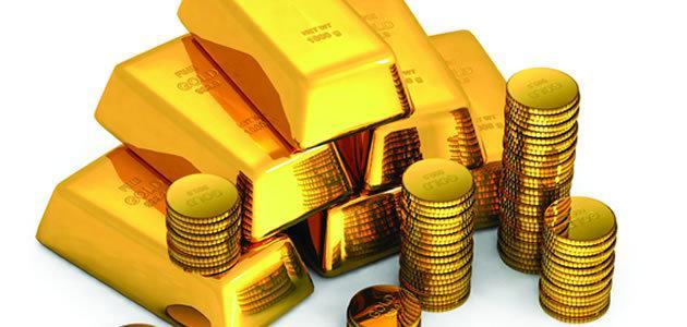 Pesquisa descobre ouro na urina nas vacas