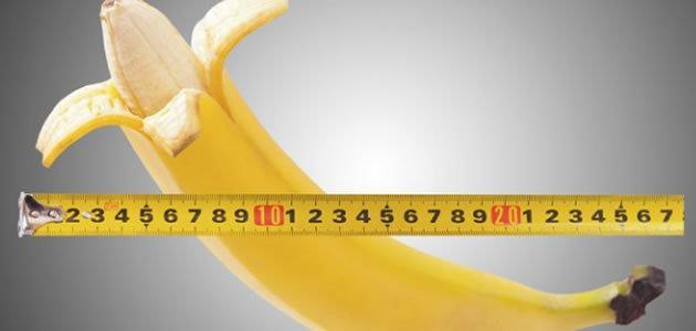 Pesquisa revela qual tamanho de pênis as mulheres gostam