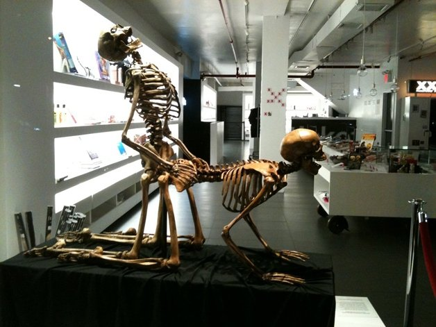 Conheça o curioso Museu do Sexo em Nova York (Crédito: Reprodução)