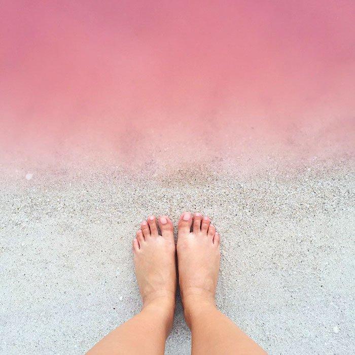 Lagoa rosa  (Crédito: Reprodução)