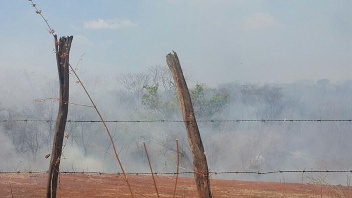 Incêndio florestal em Picos (Crédito: Reprodução)