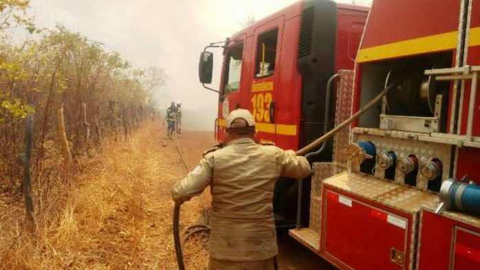 Incêndio florestal em Picos
