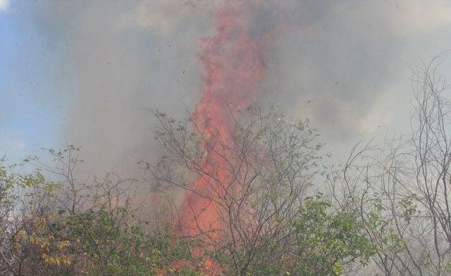 Incêndio contgrolado na manhã desta quinta (Crédito: Grande Picos)
