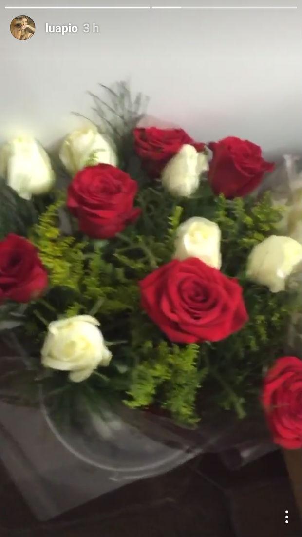 Luana Piovani recebe flores de Pedro Scooby e posta vídeo na web (Crédito: Reprodução)