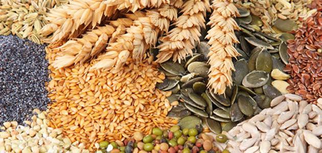 Conheça os 7 grãos que ajudam a emagrecer