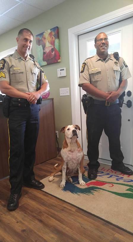 O cão foi resgatado por dois policiais (Crédito: Reprodução)