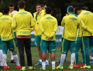 Palmeiras quer se manter firma na ponta (Crédito: Ag. Palmeiras )